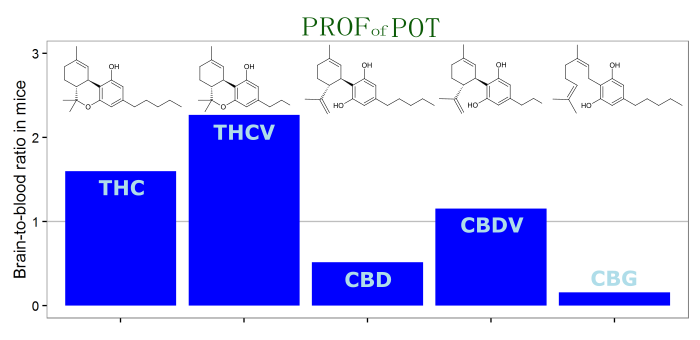 Brain penetration of THC, THCV, CBD, CBDV, and CBG