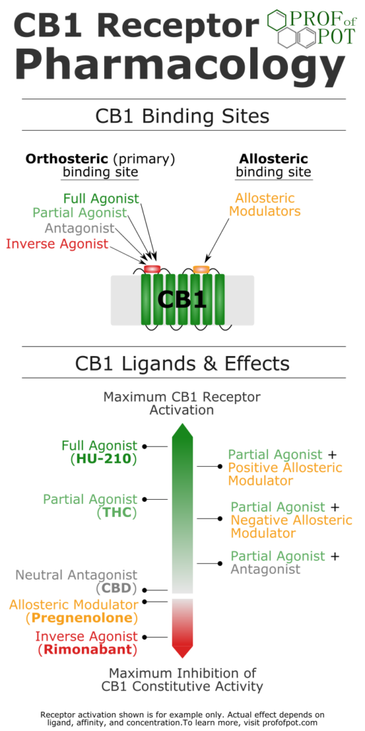 Cannabinoid CB1 receptor pharmacology - orthosteric and allosteric ligand binding. Agonist, antagonist, inverse agonist, allosteric modulator