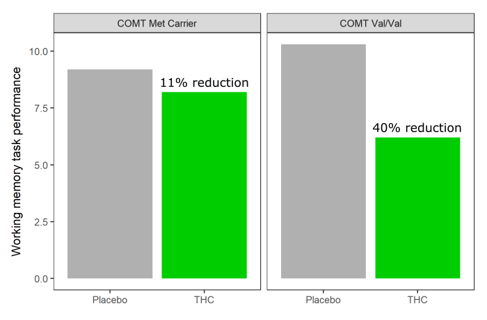 THC reduces working memory in COMT Val/Val genotype but not in Met carriers